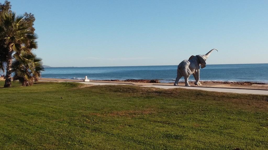 Elefante y Playa