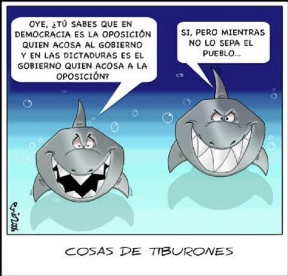 Politica y Tiburones