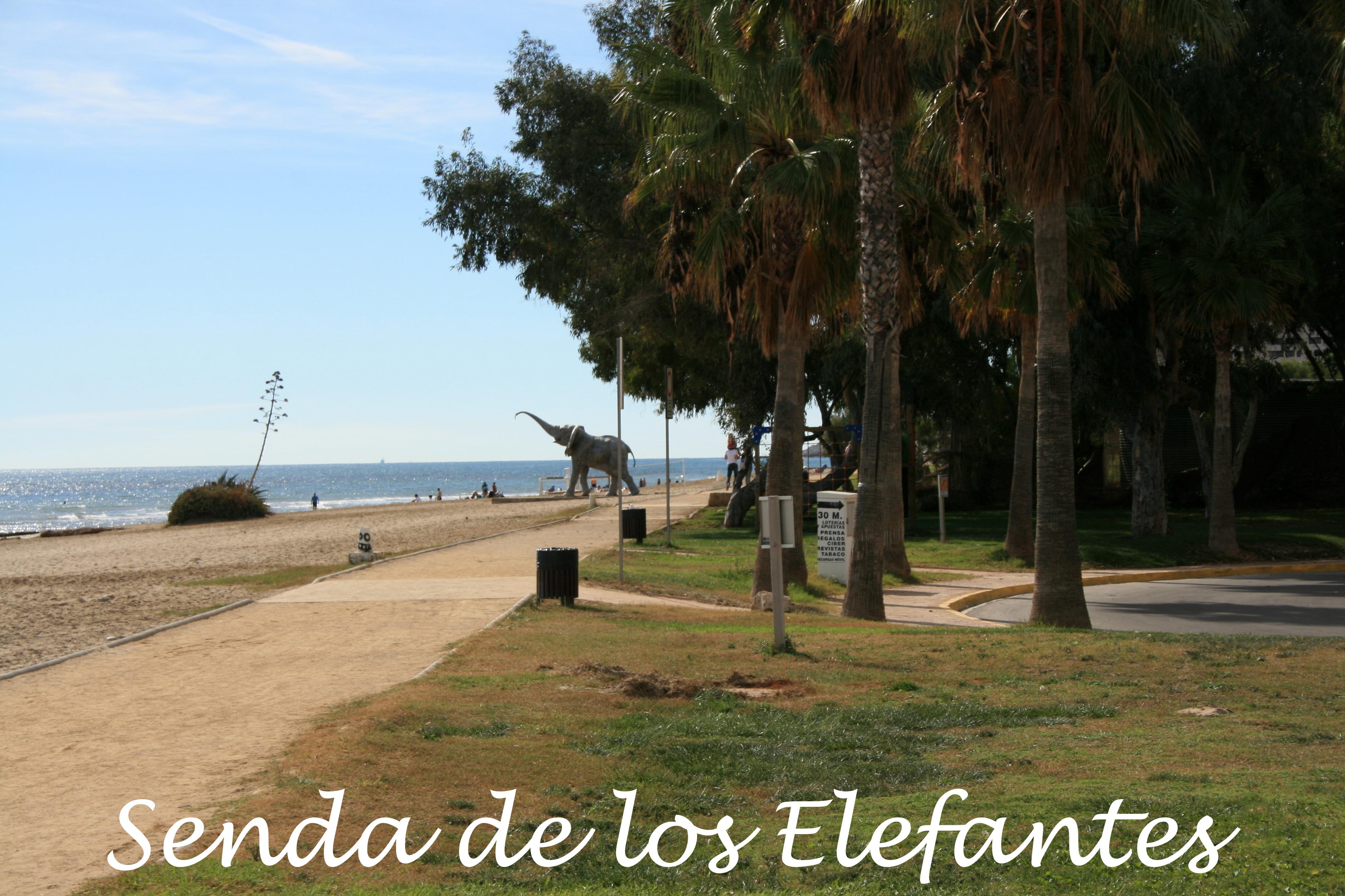 Senda de los Elefantes 1